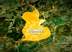 Ease of Doing Business: Presidential C'tee ranks Gombe as No.1