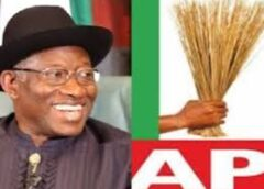 'APC consensus candidate arrangement is a plot to impose Jonathan on the party' – Arewa group cry out
