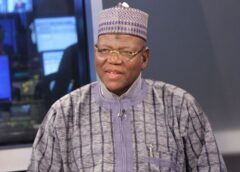 'APC founded on lies, blackmail, can't go beyond 2023' – Lamido